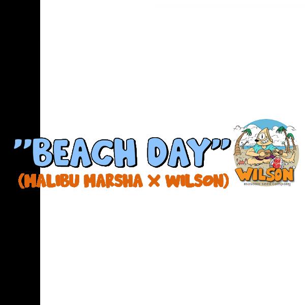 """Beach Day"" (Malibu Marsha X Wilson)"