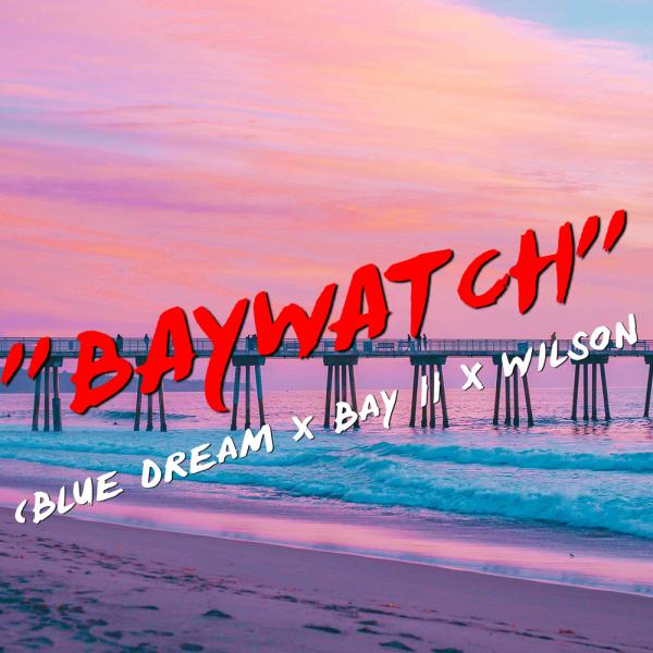 """Baywatch"" Blue Dream x Bay 11 x Wilson"