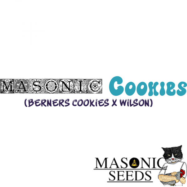 Masonic Cookies (Berners Cookies X Wilson)