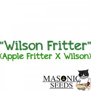 """""""Wilson Fritter"""" (Apple Frittter X Wilson)"""