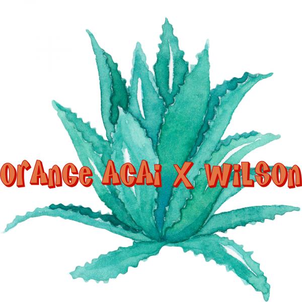 (Orange Acai Menthol) X Wilson