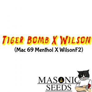 Tiger Bomb (Mac 69 Menthol) X Wilson