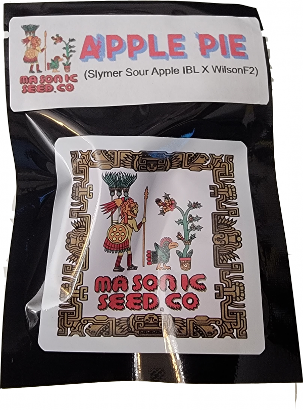 Apple Pie X Wilson