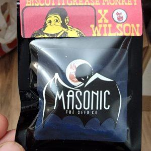 Biscotti Grease Monkey X Wilson